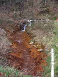orange water and stream bank